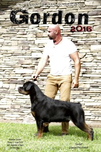 Gordon by stone wall 2