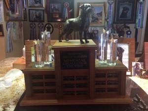 Seminole trophy